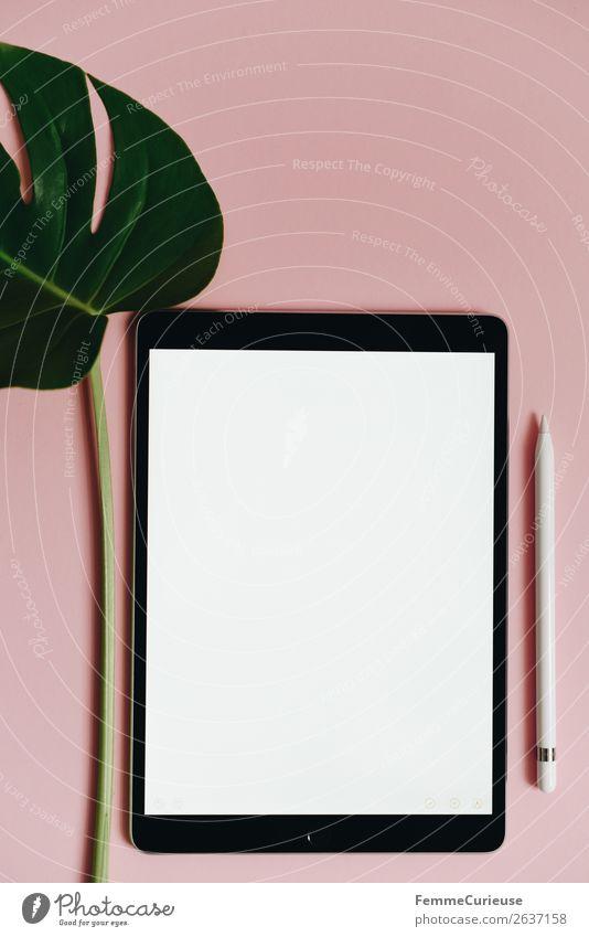 Tablet and leaf of a monstera on pink background grün weiß rosa Design modern Kommunizieren Technik & Technologie Kreativität Zukunft leer Papier schreiben