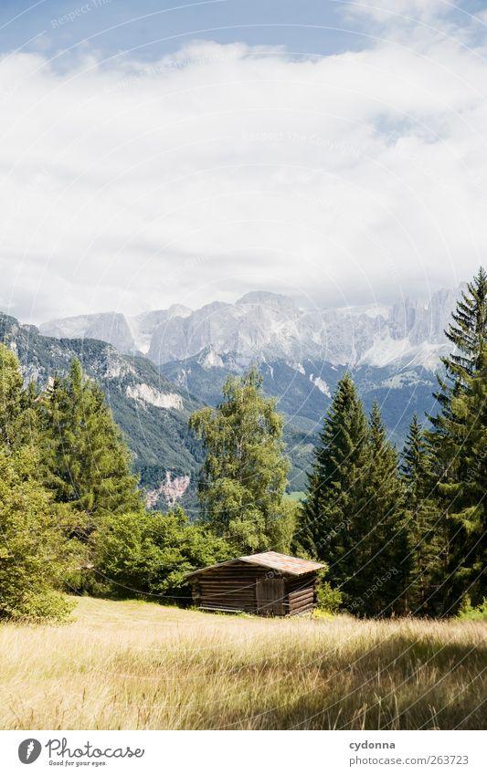 Mit Abstand zur Welt Himmel Natur Ferien & Urlaub & Reisen Sommer Einsamkeit ruhig Wald Ferne Erholung Umwelt Landschaft Wiese Berge u. Gebirge Freiheit Ausflug