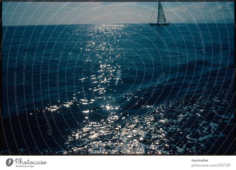 quer ab Freiheit Sommer Meer Segeln Natur Wasser Schifffahrt Segelboot glänzend ästhetisch einzigartig Tourismus Morgen Licht Schatten Kontrast Silhouette
