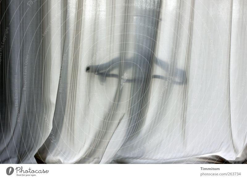 Was iss? Wohnung einfach grau schwarz Gefühle Vorhang Faltenwurf Fenster Kleiderbügel Farbfoto Gedeckte Farben Innenaufnahme Menschenleer Morgen Schatten