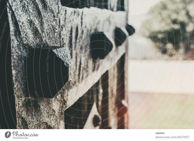 Nahaufnahme der Schmiededetails einer alten Holztür mit Perspektive Design Haus Platz Gebäude Architektur Ring Metall Rust braun Tradition Tür bügeln Eingang