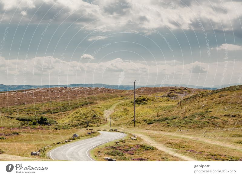 Wales | Llandudno | Great Orme Himmel Natur Ferien & Urlaub & Reisen Sommer Pflanze Landschaft Wolken ruhig Ferne Berge u. Gebirge Straße Umwelt Wege & Pfade