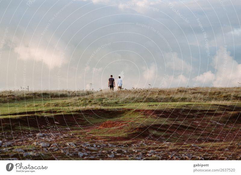 Wales Himmel Natur Sommer blau Landschaft Wolken Umwelt natürlich Gras Zusammensein braun Freundschaft gehen Horizont träumen Feld