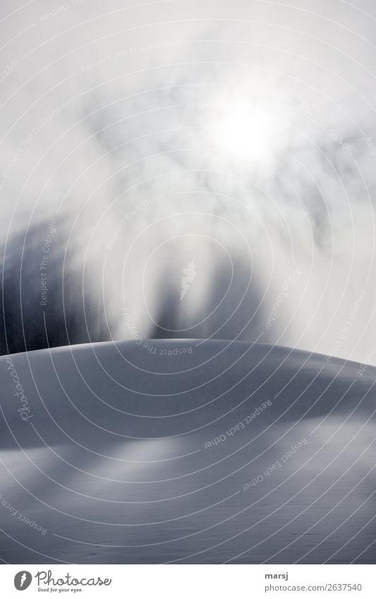 Schneegestöber Ferien & Urlaub & Reisen Natur weiß ruhig Winter kalt natürlich außergewöhnlich Schneefall leuchten träumen Eis Hügel Unendlichkeit Frost