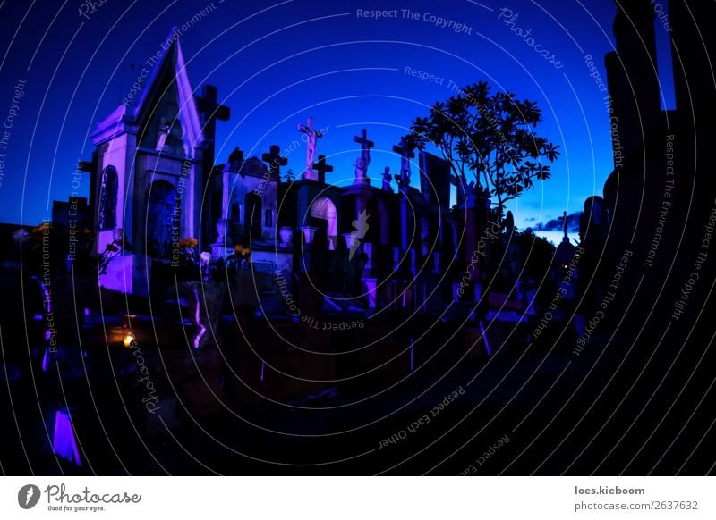 Blue and pink lightened tombstones during dawn Halloween Sehenswürdigkeit gruselig trösten Schmerz Religion & Glaube Tod graveyard Mérida mexico