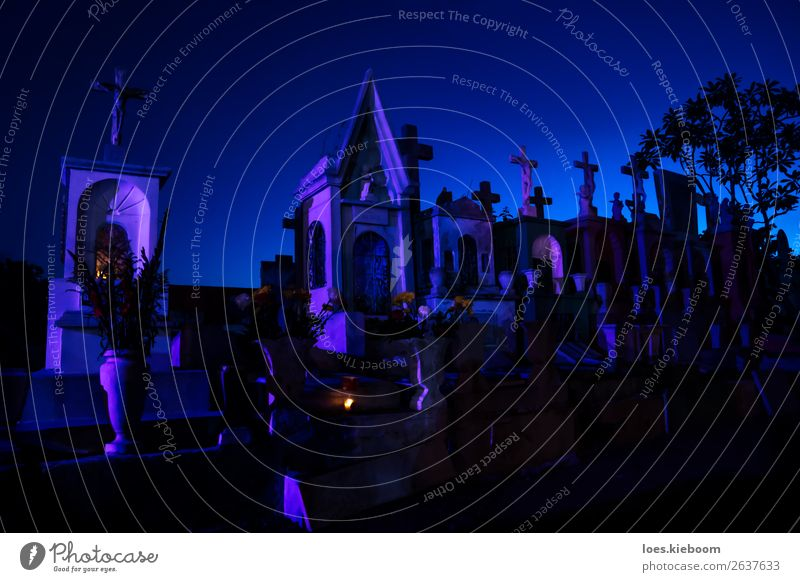 Blue and pink lightened tombstones with burning candles Halloween Sehenswürdigkeit Kreuz gruselig trist trösten Schmerz Religion & Glaube Tod Trauer graveyard