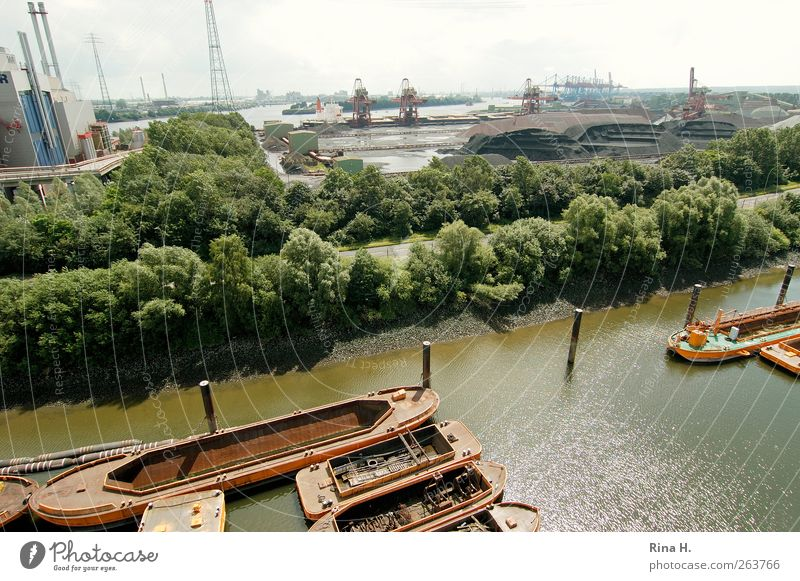 Hamburger Hafen Industrie Sommer Baum Fluss Hafenstadt Schifffahrt Binnenschifffahrt Wasserfahrzeug authentisch Elbe Wirtschaft Erz Farbfoto Menschenleer