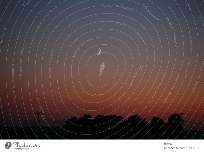 ) Umwelt Natur Landschaft Himmel Horizont Mond Schönes Wetter dunkel Unendlichkeit schön Romantik authentisch Leben Weisheit bescheiden Hoffnung demütig Schmerz