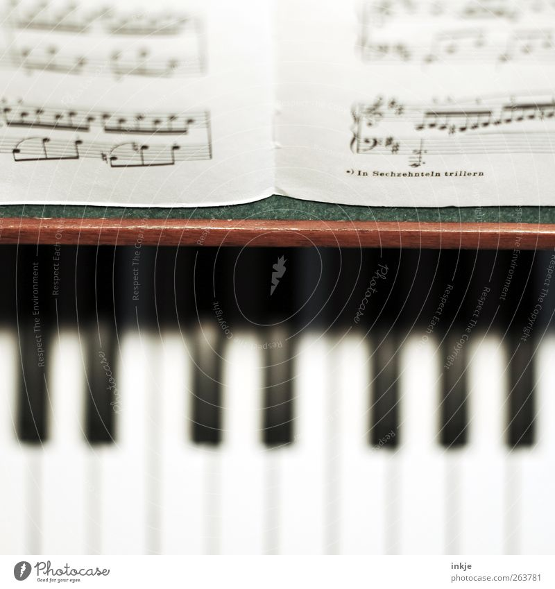 in sechzehnteln trillern Musik Klaviatur Klavier Musikinstrument Musiknoten Klassik Musikunterricht