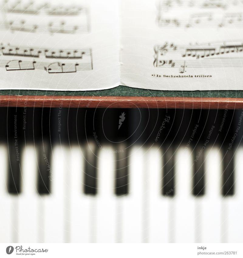 in sechzehnteln trillern Musik Klavier Musiknoten Klaviatur Klassik Musikinstrument Musikunterricht Farbfoto Innenaufnahme Nahaufnahme Detailaufnahme