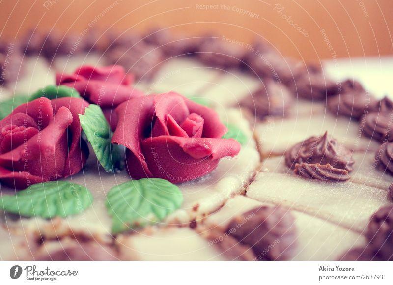 Alles Gute! Kuchen Süßwaren Torte Ernährung Kaffeetrinken Blühend Feste & Feiern frisch Kitsch lecker rund süß braun grün rot Freude Lebensfreude genießen Rose