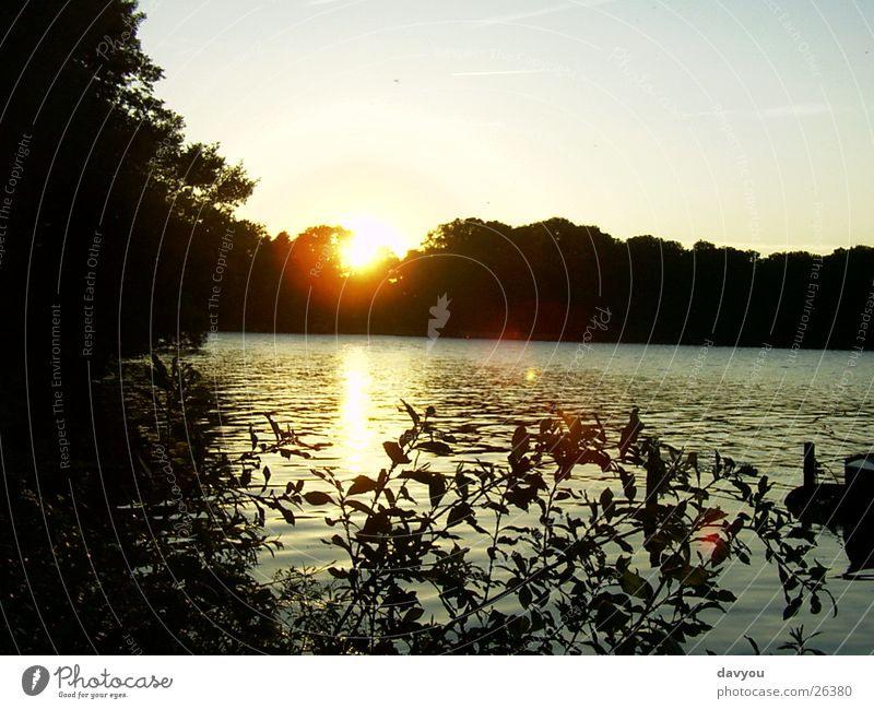 Sonnenuntergsng in Ascheberg Erholung Ausflug Ferne Seeufer Umwelt Natur Pflanze Wasser Himmel Sonnenaufgang Sonnenuntergang Sommer Park Wald genießen Romantik