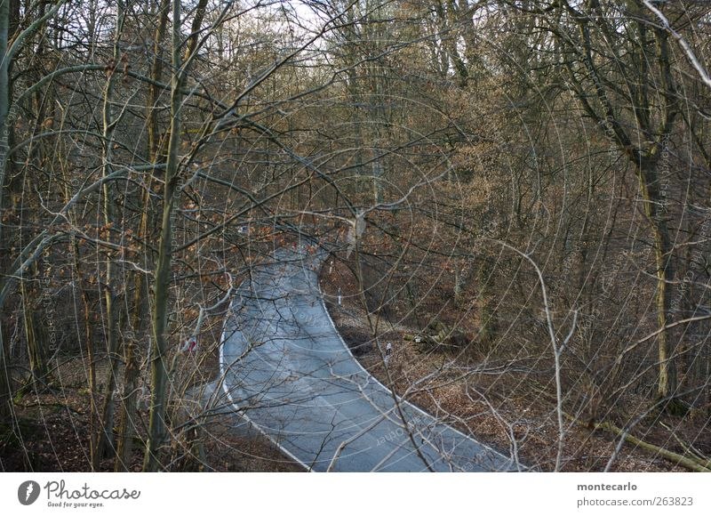 .....rush hour im schwabenländle Ausflug Abenteuer Ferne Winter Umwelt Natur Landschaft Schönes Wetter Baum Sträucher Wald Verkehrswege Straßenverkehr