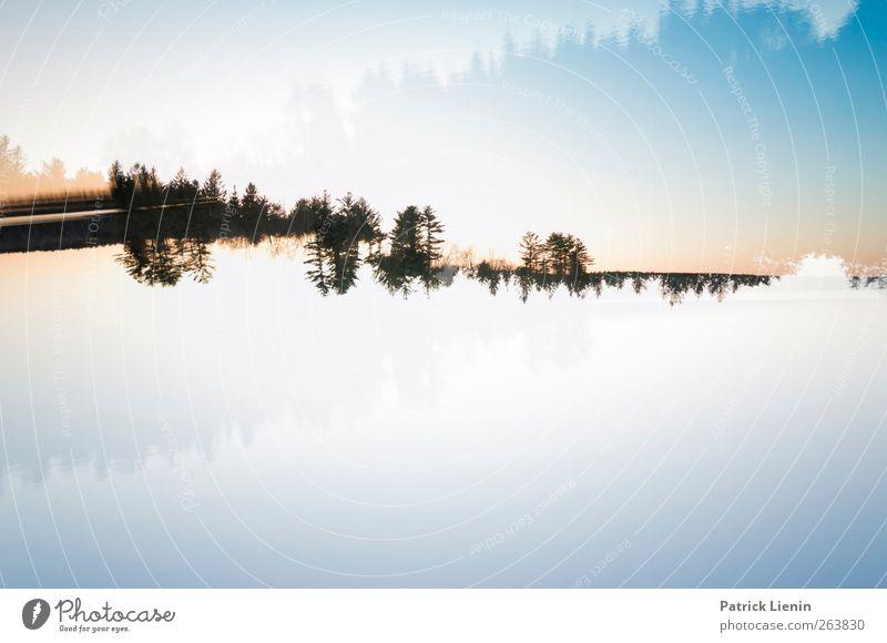 liquid soul Himmel Natur Wasser Einsamkeit Wald Umwelt Landschaft Freiheit Luft Kunst Stimmung Wetter Freizeit & Hobby Klima außergewöhnlich ästhetisch