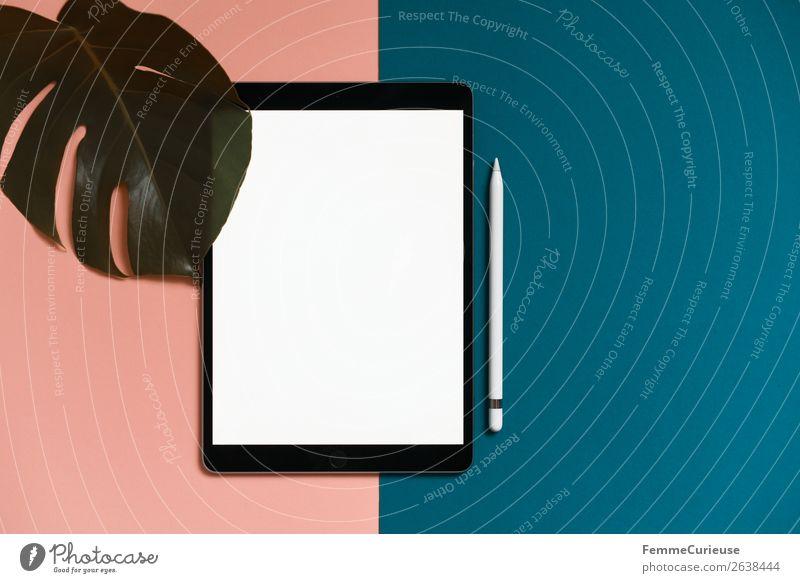 Tablet on salmon-colored and turquoise background Pflanze weiß Blatt Dekoration & Verzierung ästhetisch Kreativität leer Papier türkis Schreibwaren