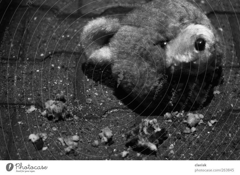 einen Kopf kürzer. Teddybär Stofftiere kämpfen schreien Aggression bedrohlich dreckig dunkel authentisch gruselig kuschlig kaputt niedlich trashig trist weich