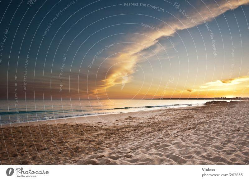 that's it Himmel Wasser schön Ferien & Urlaub & Reisen Sonne Meer Sommer Strand Wolken ruhig Erholung Umwelt Freiheit Sand Luft Erde
