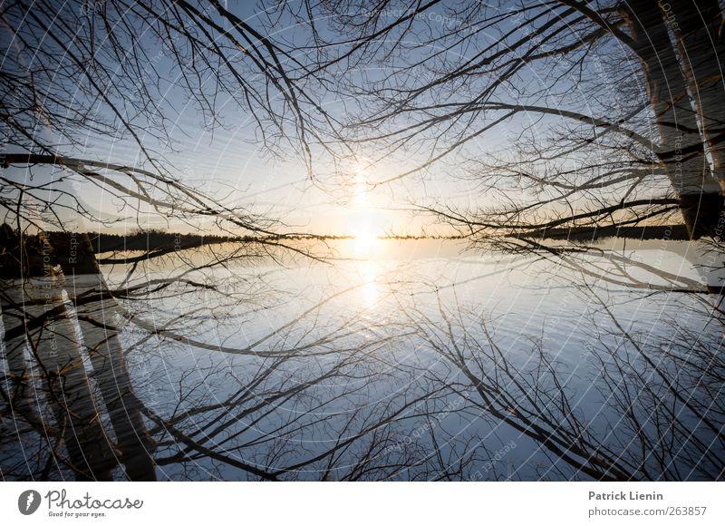 die Schönheit der Chance Umwelt Natur Landschaft Urelemente Luft Wasser Himmel Wolken Sonne Sonnenaufgang Sonnenuntergang Sonnenlicht Wetter Schönes Wetter
