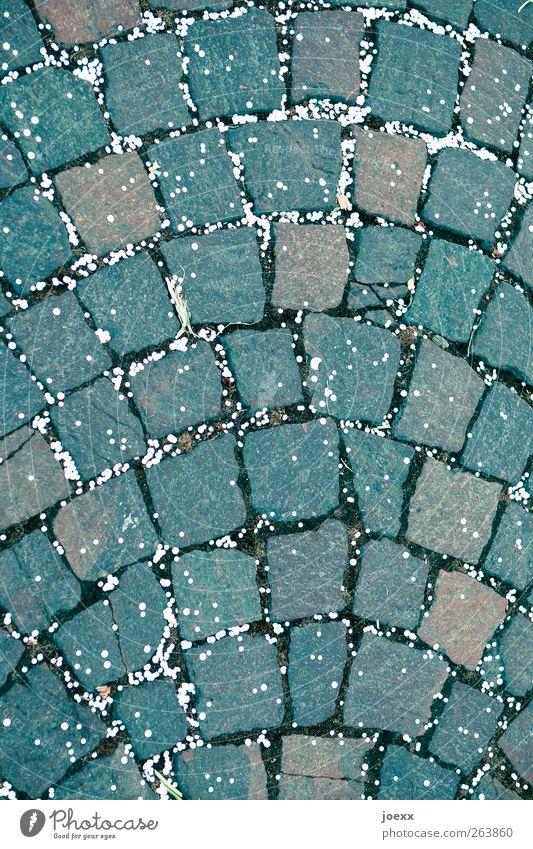 Punkteverteilung Straße Stein braun grau weiß Konfetti Kopfsteinpflaster Pflastersteine Farbfoto Außenaufnahme Menschenleer Tag Weitwinkel liegen
