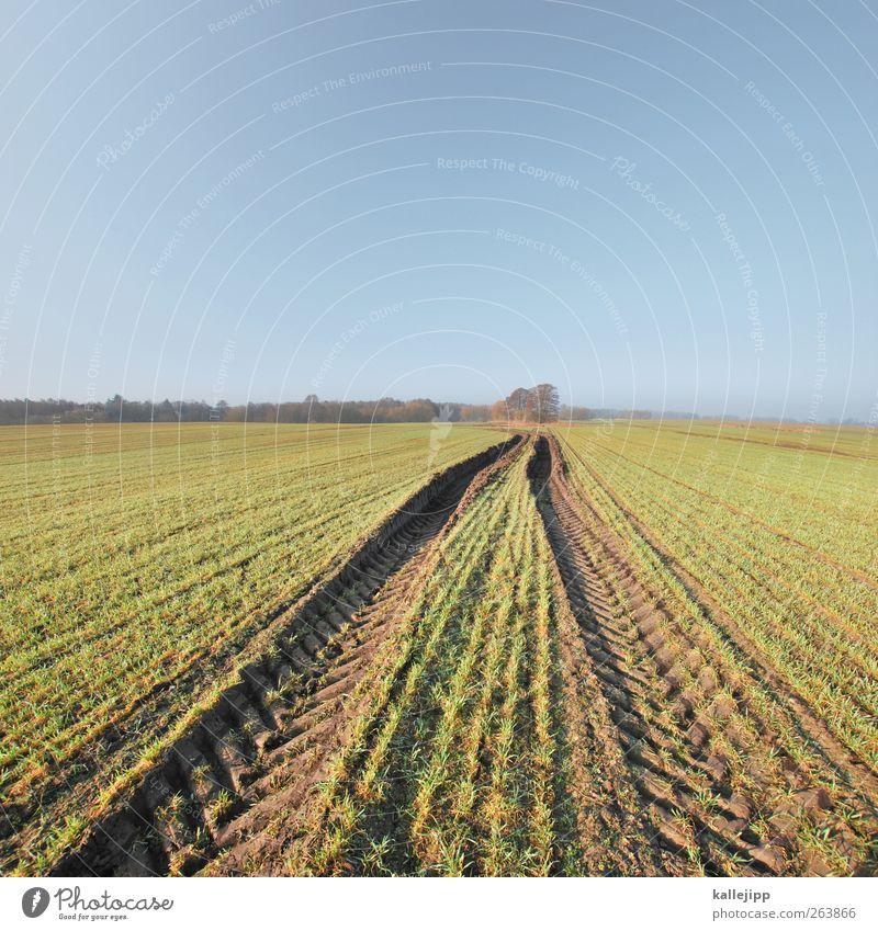 im märzen der bauer Arbeit & Erwerbstätigkeit Landwirtschaft Forstwirtschaft Umwelt Natur Landschaft Pflanze Urelemente Himmel Wolkenloser Himmel Frühling Klima
