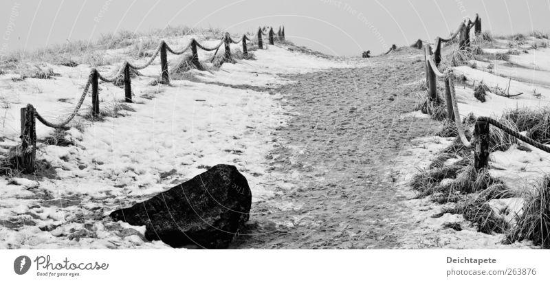 Boulevard of broken dreams Ferne Winter Schnee Natur Sand Eis Frost Küste Wege & Pfade Fußspur kalt schwarz weiß ruhig Schwarzweißfoto Außenaufnahme Morgen