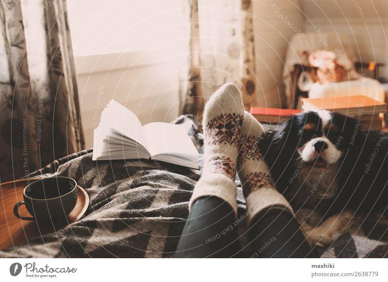 gemütlicher Wintertag zu Hause bei einer Tasse heißem Tee Lifestyle Erholung Freizeit & Hobby lesen Freundschaft Fuß Buch Herbst Hund authentisch Geborgenheit