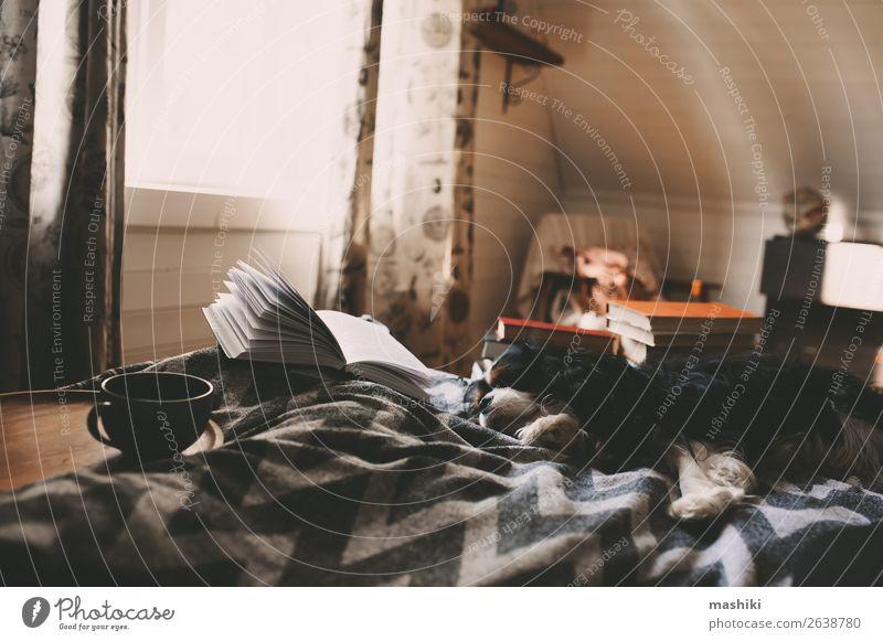 gemütlicher Wintertag zu Hause bei einer Tasse heißem Tee Lifestyle Erholung Freizeit & Hobby lesen Freundschaft Buch Herbst Hütte Hund authentisch Geborgenheit