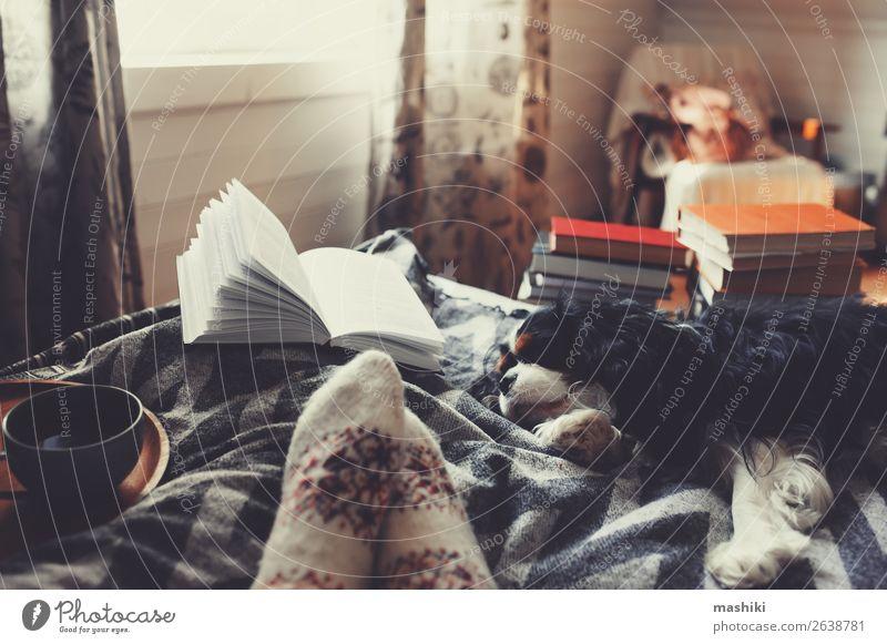 gemütlicher Wintertag zu Hause bei einer Tasse heißem Tee Lifestyle Erholung Freizeit & Hobby lesen Frau Erwachsene Freundschaft Fuß Buch Herbst Wärme Hütte