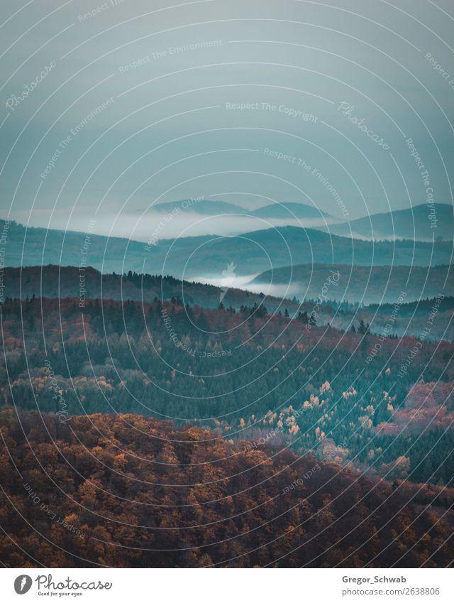 Täler der Rhön Umwelt Natur Landschaft Pflanze Tier Sturm Nebel Denken Tal Berge u. Gebirge Herbst Farbfoto Gedeckte Farben Menschenleer Dämmerung