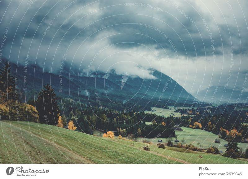 schlechtes Wetter in den Alpen Umwelt Natur Landschaft Urelemente Erde Luft Himmel Wolken Gewitterwolken Klima Klimawandel Unwetter Nebel Baum Gras Hügel