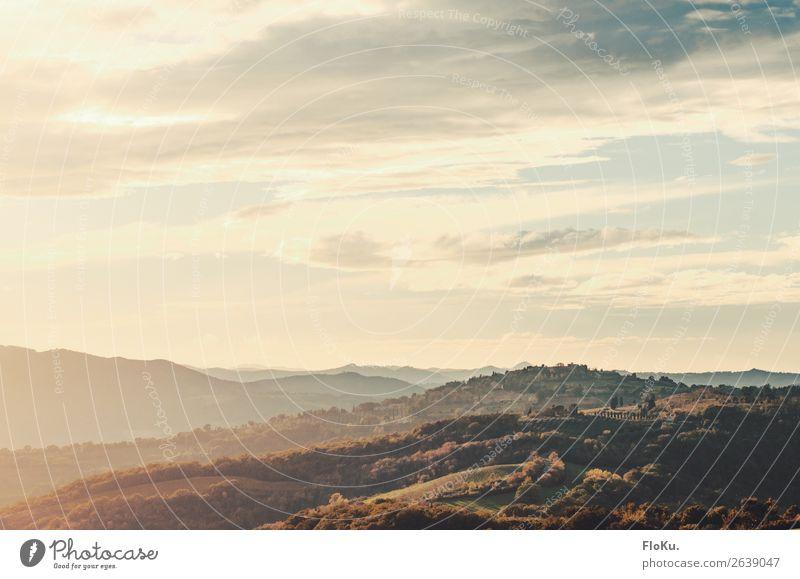 Hügel in der Toskana im Abendlicht Ferien & Urlaub & Reisen Tourismus Abenteuer Ferne Freiheit Italien mediterran Umwelt Natur Landschaft Urelemente Luft Himmel