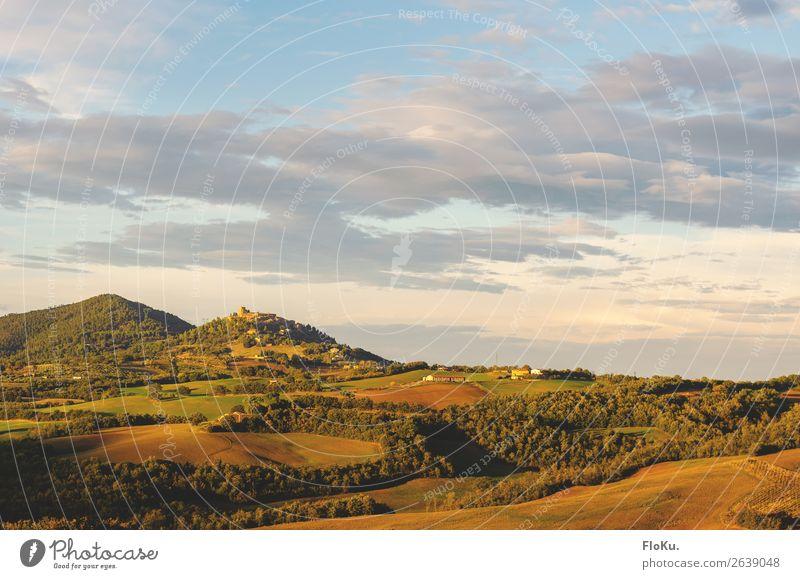 Hügel der Toskana im warmen Herbstlicht Ferien & Urlaub & Reisen Abend Farbfoto Außenaufnahme mediterran Reisefotografie Fernweh Italien grün blau natürlich
