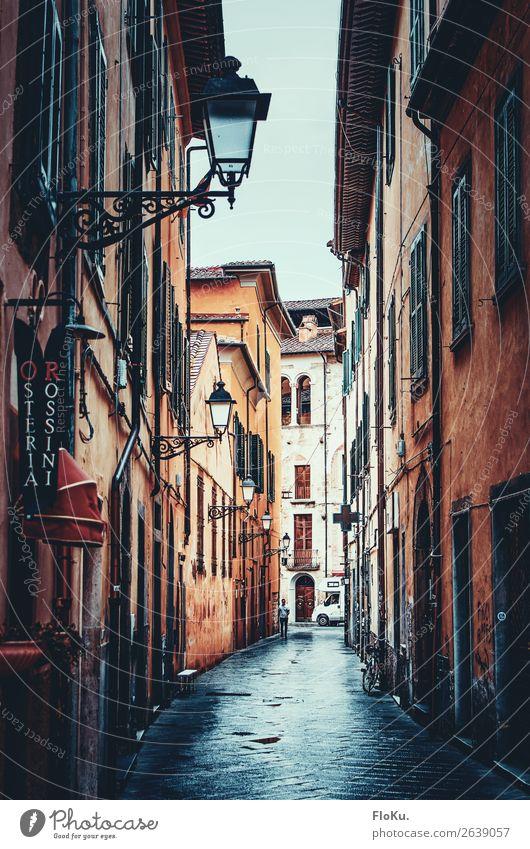 Pisa bei Regen Ferien & Urlaub & Reisen Tourismus schlechtes Wetter Italien Europa Stadt Stadtzentrum Altstadt Haus Bauwerk Gebäude Architektur Straße