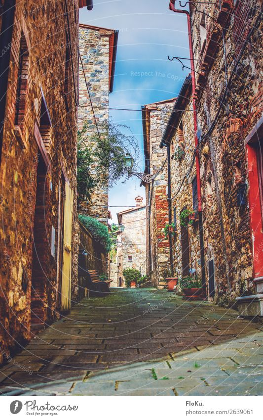 Toskanisches Dorf Ferien & Urlaub & Reisen Tourismus Castelnuovo di Val di Cecina Italien Europa Altstadt Haus Bauwerk Gebäude Architektur Sehenswürdigkeit
