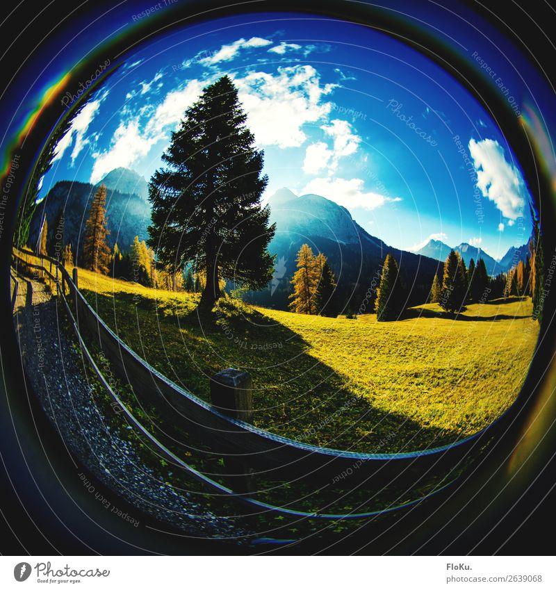 Ab auf die Alm Ferien & Urlaub & Reisen Tourismus Ausflug Berge u. Gebirge wandern Umwelt Natur Landschaft Urelemente Himmel Wolken Sonnenaufgang