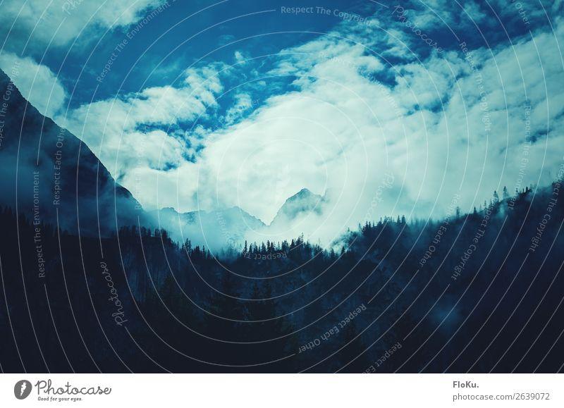 Gipfel in Watte Umwelt Natur Landschaft Urelemente Luft Himmel Wolken Klima Wetter Nebel Felsen Alpen Berge u. Gebirge Schneebedeckte Gipfel bedrohlich