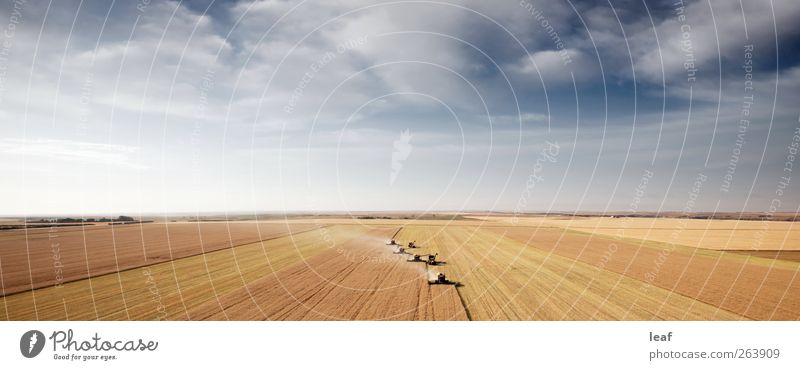 Luftbild Prärielandschaft Sommer Industrie Maschine Landschaft Horizont Traktor Anhänger Fluggerät groß oben gelb Ernte Korn Feld Mähdrescher Saskatchewan