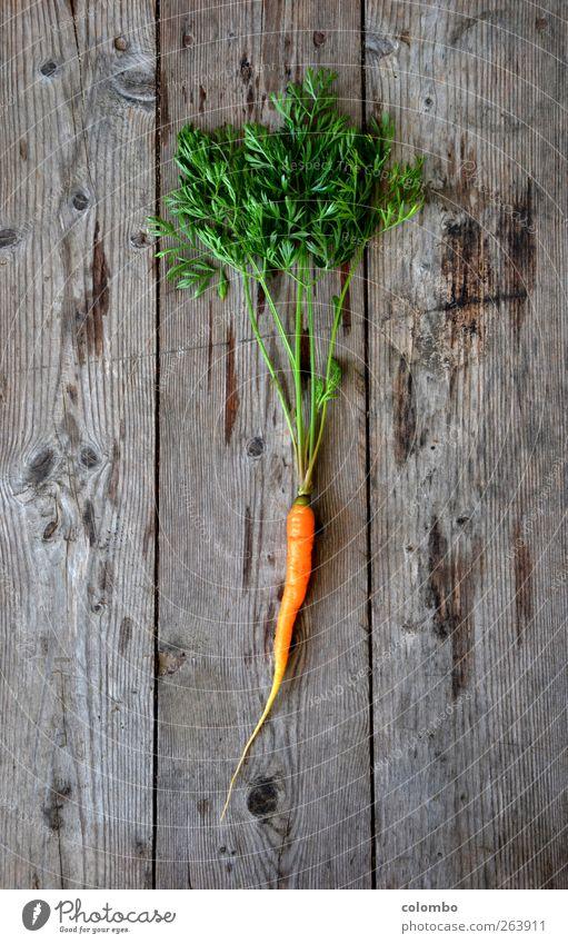 Möhre schön Gesundheit Gesunde Ernährung sportlich Fitness Wellness Leben Wohlgefühl Kur Sommer wandern Pflanze Erde Nutzpflanze orange essbar Farbfoto