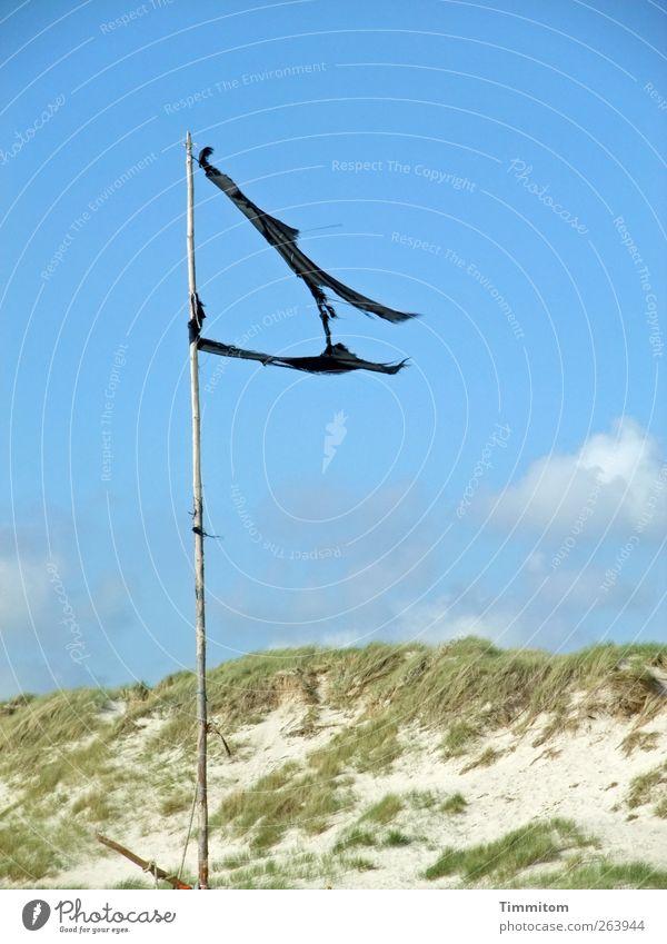 Wie mein Haar im Wind. Ferien & Urlaub & Reisen Sommer Natur Landschaft Sand Himmel Wolken Schönes Wetter Strand Nordsee Holz einfach blau schwarz Gefühle Fahne