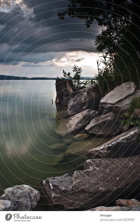 die Ruhe vor dem Sturm Himmel Natur Wasser grün Baum Sommer Wolken schwarz ruhig Umwelt Landschaft dunkel grau Stein See Horizont