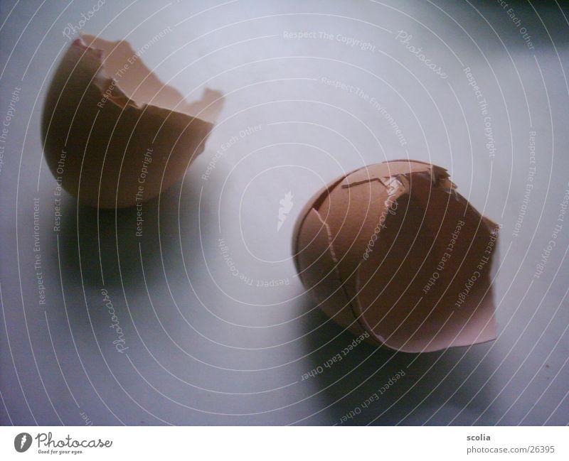 Oef Ernährung Ei Schalen & Schüsseln Eierschale