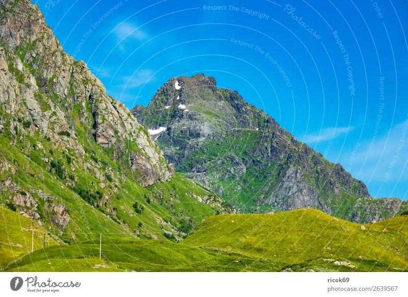 Berge auf den Lofoten in Norwegen Ferien & Urlaub & Reisen Natur Sommer blau grün Landschaft Erholung Wolken Berge u. Gebirge Umwelt Wiese Gras Tourismus Felsen