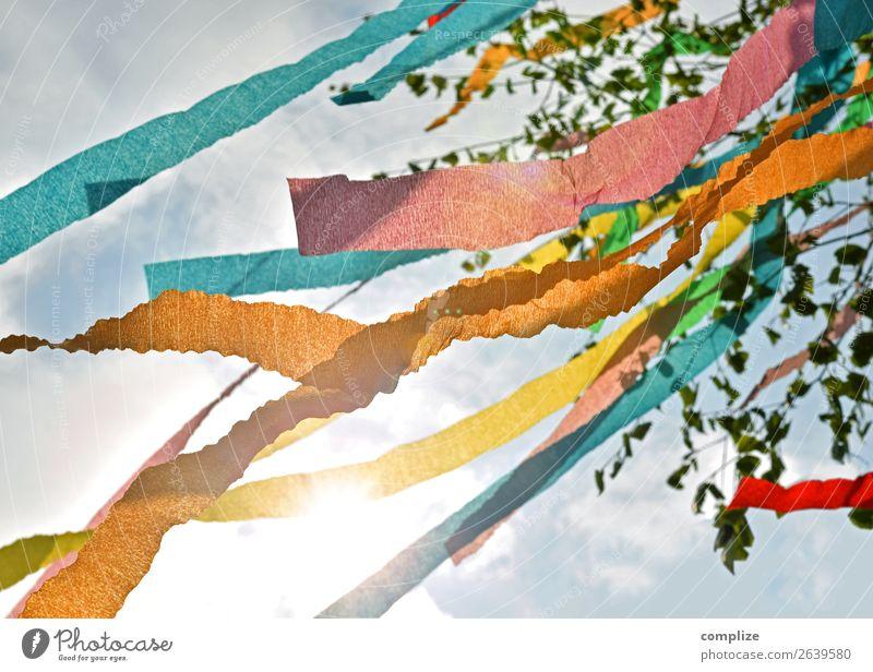 Maibaum Sonne Party Feste & Feiern 1. Mai Natur Wind Baum Blatt Fahne Fröhlichkeit mehrfarbig Birke Ast Zweig Schnipsel Frühling Birkenblätter Ritual Tradition