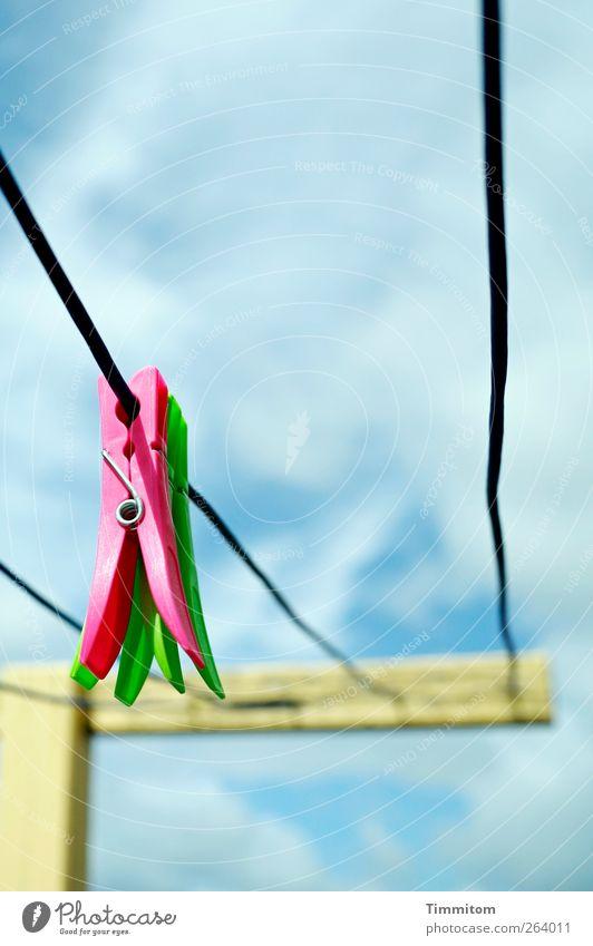 Alles putt! Himmel blau grün Ferien & Urlaub & Reisen Sommer Wolken rosa einfach Kunststoff hängen Wäscheleine Dänemark Wäscheklammern