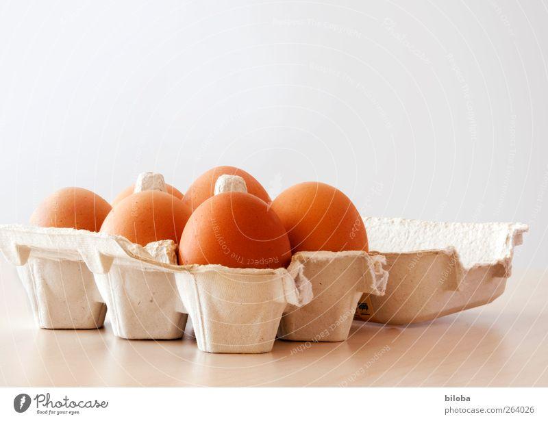 Zeit zum Eier färben weiß braun Bioprodukte Ei Osterei Feste & Feiern mehrere