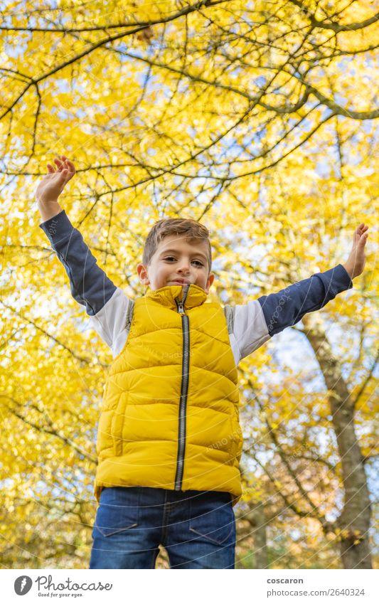 Süßes Kind gegen einen gelben Baum im Herbst Lifestyle Freude Glück schön Freizeit & Hobby Ferien & Urlaub & Reisen Freiheit Mensch Baby Kleinkind Junge Mann