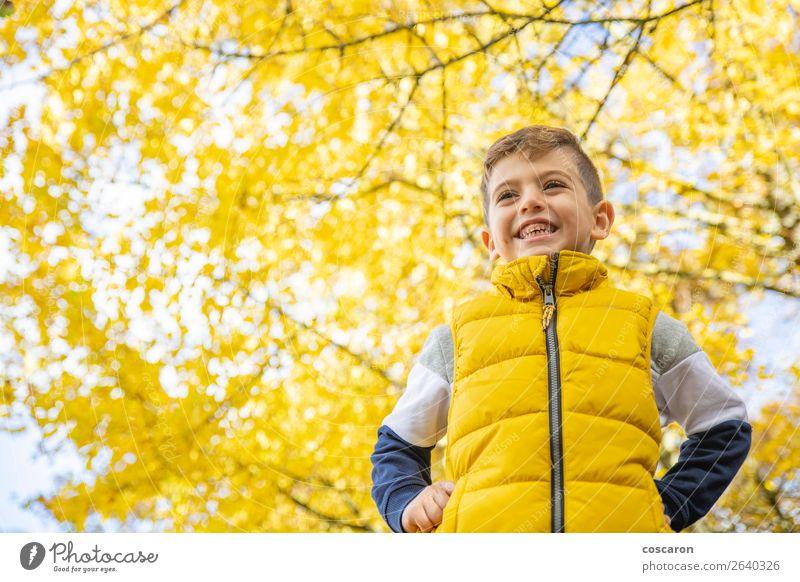 Kind Mensch Natur Mann Pflanze Farbe schön Landschaft Sonne Baum Blatt Freude Wald Winter Lifestyle Erwachsene