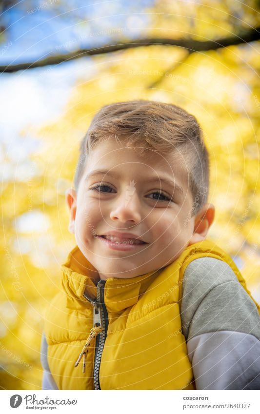 Kind Mensch Ferien & Urlaub & Reisen Natur Mann Pflanze Farbe schön Landschaft Baum Blatt Freude Wald Winter Lifestyle Erwachsene