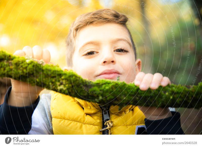 Schönes Kind mit gelber Weste im Herbst im Wald. Lifestyle Freude Glück schön Gesicht Spielen Ferien & Urlaub & Reisen Mensch Baby Kleinkind Junge Mann