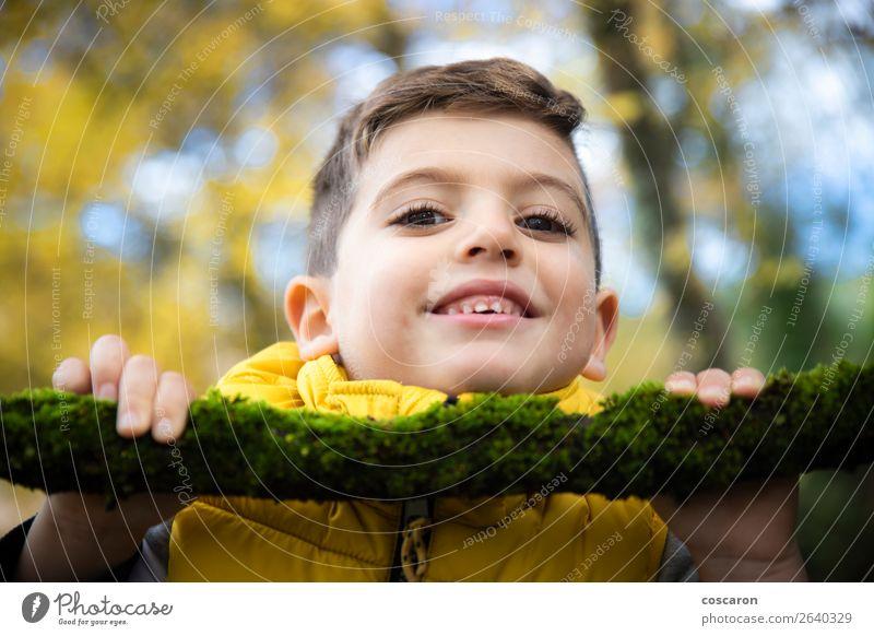 Schönes Kind mit gelber Weste im Herbst im Wald. Lifestyle Stil Freude Glück schön Gesicht Spielen Mensch Baby Kleinkind Junge Mann Erwachsene Kindheit 1